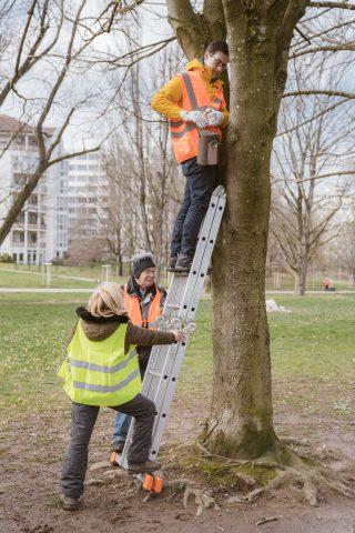 Zusammen mit der AG Mooswald, dem Bürgerverein Mooswald und zahlreichen Bürgern reinigte Martin Horn Nistkästen im Seepark.